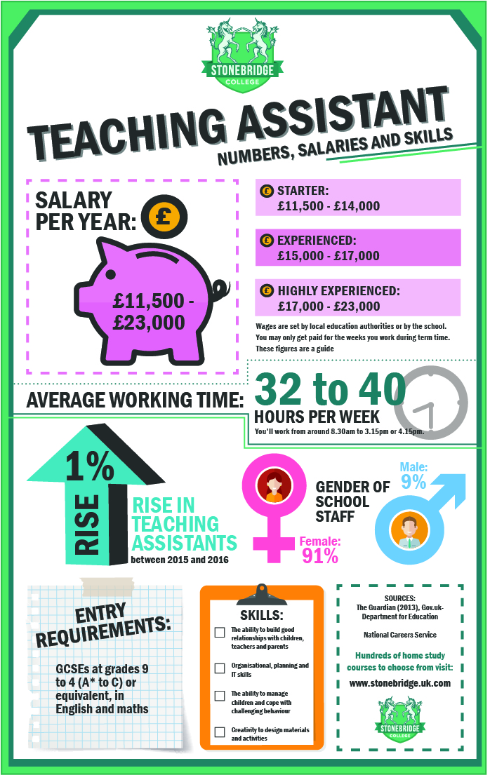 teaching assistant infographic