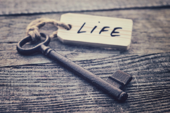 Key and label. Life concept. Key to life