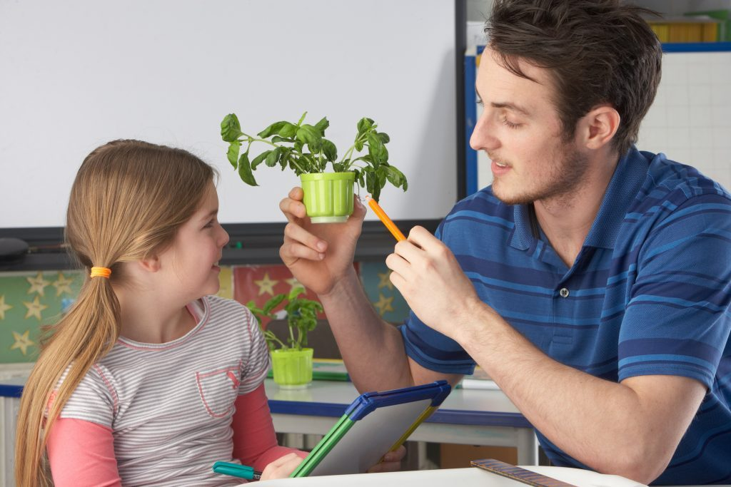 Male teaching assistant helping pupil in science class by pointing at plant.