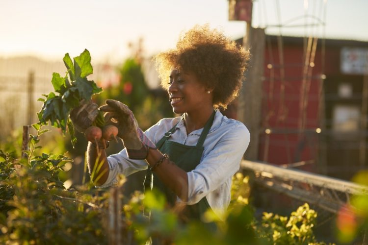 Happy woman in her allotment, admiring the vegetables she has grown.