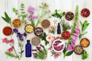 Herbs, plants and flowers placed on a table with instruments for holistic therapy.