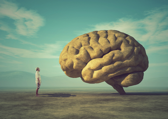 concept image of a young man and the shape of a brain