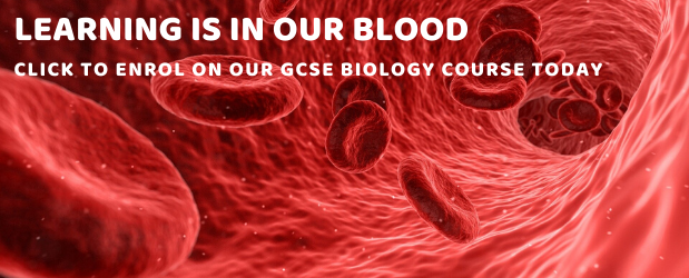 Stonebridge | Should I take GCSE Biology | Enrol Today