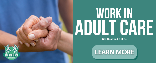 What is Adult Care Level 3 equivalent to? Study Online