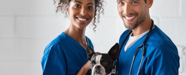 Stonebridge - Become a Veterinary Nurse