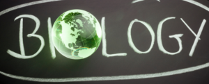 Stonebridge - What is Conservation Biology?