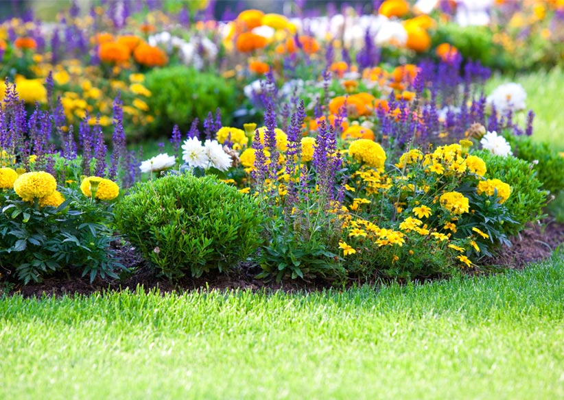 Gardening And Landscaping Courses hen how to Home Decorating Ideas